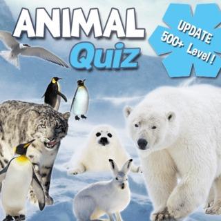 Animal Quiz Christmas Puzzle games